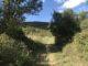randonnée pédestre autour de Montpellier