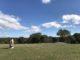 site préhistorique hérault